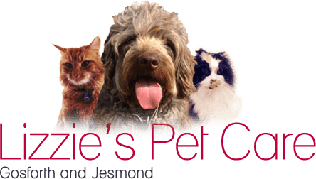 Lizzie's Pet Care - Gosforth and Jesmond